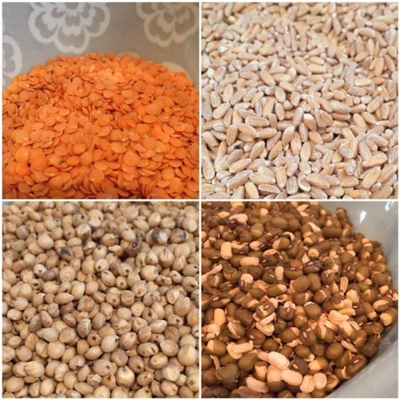 6 grains to know
