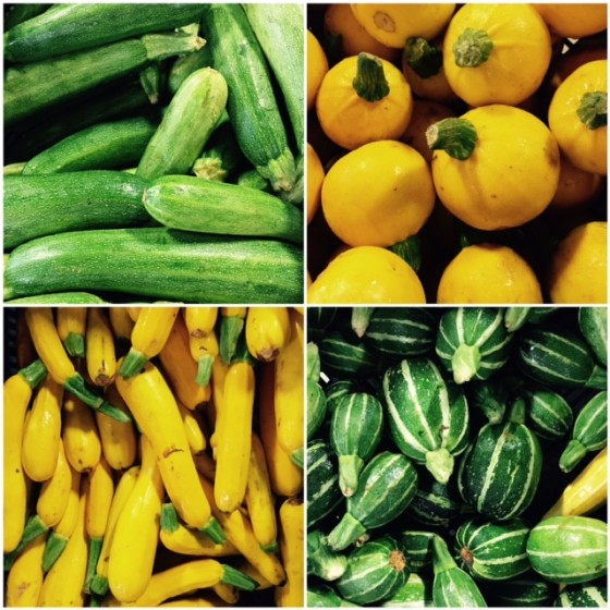 summer squash and zucchini varieties