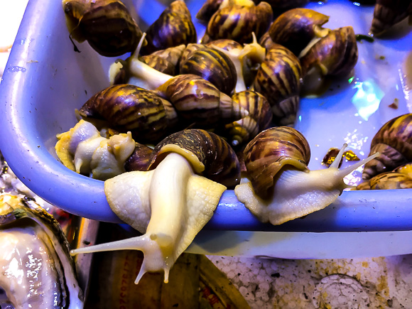 Snails to go in China