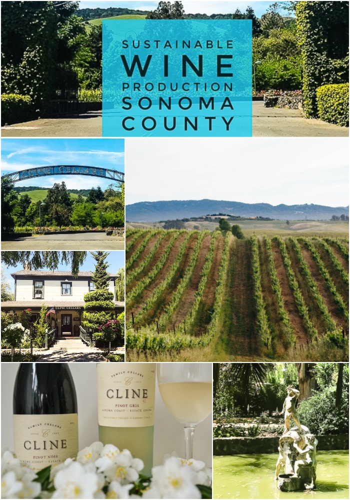 Sustainable wine production in California