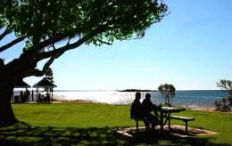 lake-greenwood-picnic