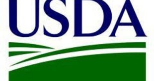 USDA Choice?