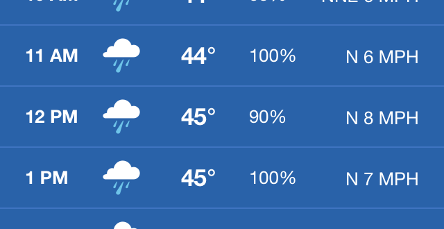 rain in the forecast