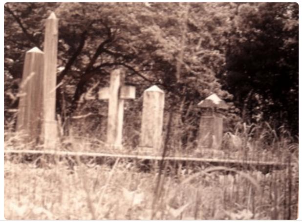 Haunted Greenwood