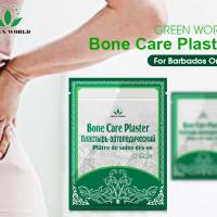 Green World Bone Care Plaster