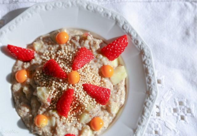 veganer warmer Porridge Haferbrei mit Früchten