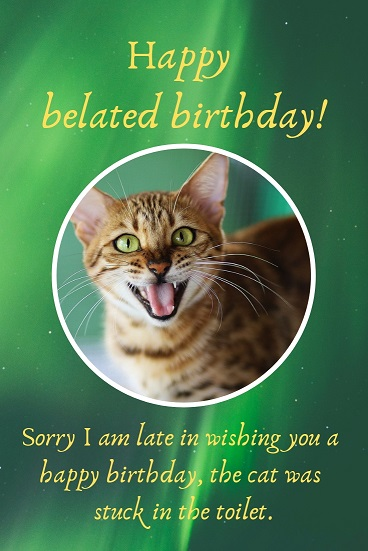 Sorry I am late in wishing you a happy birthday, the cat was stuck in the toilet.