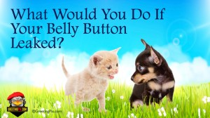 #3 What Would You Do If Your Belly Button Leaked.001