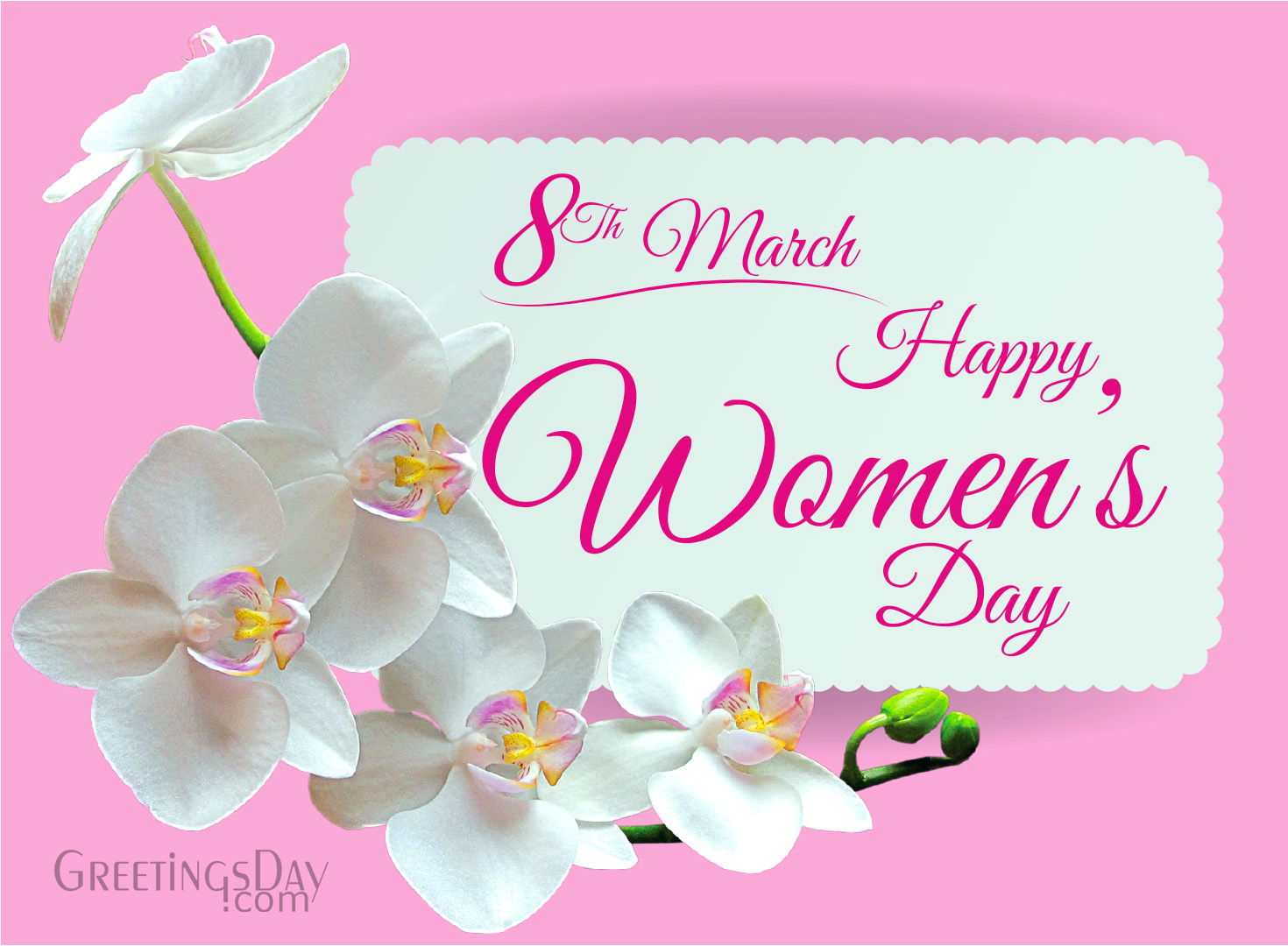 Women S Day Cards Pictures Holidays