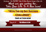 day 11 of the 25 day success challenge, wheel of life