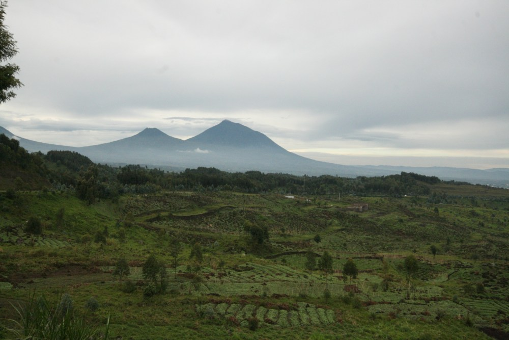 I fear I am falling in love with Rwanda. (1/6)