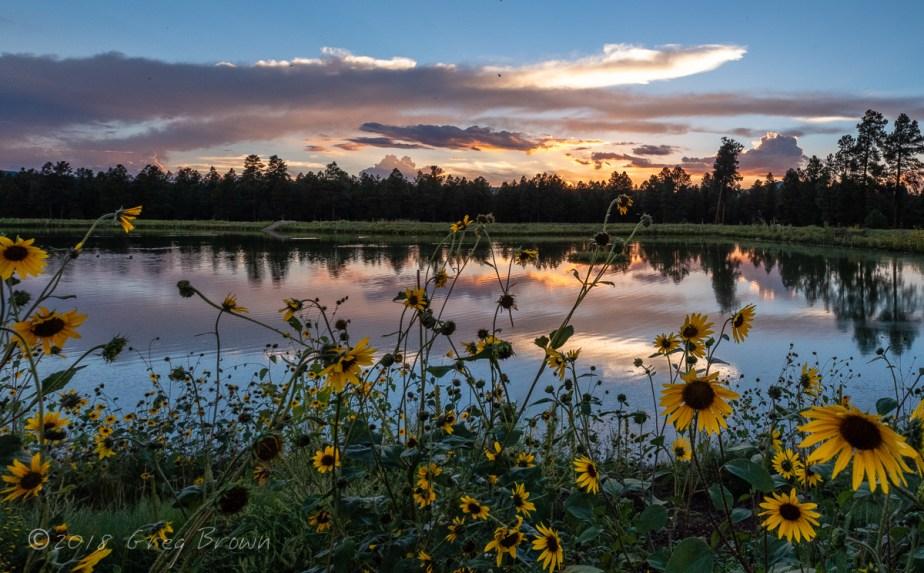 SunsetReflections_KachinaWetlands_0594-PanoeSmw1200