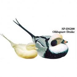 STUDY CASTS Ducks, Jerry Simchuk / Dennis Schroeder