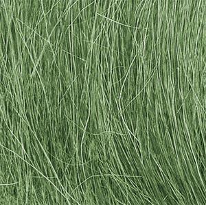Field Grass - Medium Green