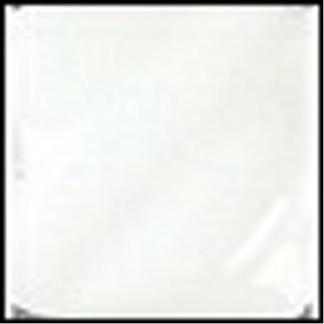 Gloss (LG) Glazes - LG-10 Clear Transparent [TP], 1 Pint Liquid