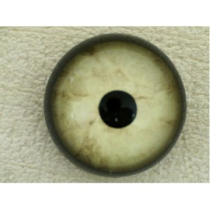 ON WIRE EYES - EAGLE BALD Competition Grade Cream blended 14 mm