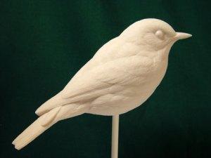 Bluebird, Eastern - Bob Guge