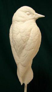 Woodpecker, Downy  - Bob Guge study cast