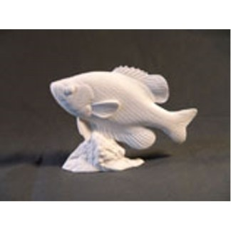 "Crappie Fish  by Josh Guge, Study Cast6"" long X 4 1/2"" high"