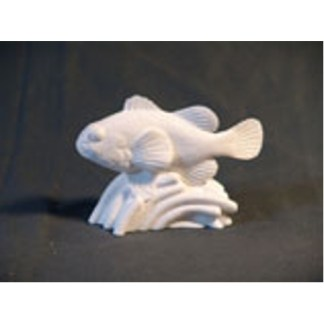 "Clown Fish by Josh Guge, Study Cast4"" long X 3"" high"