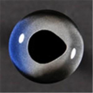 Fish Eyes, Sailfish 26 mm