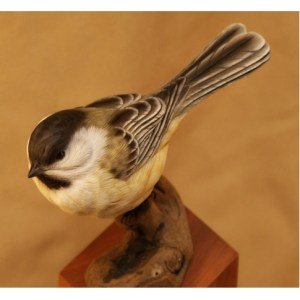 Chicadee Tupelo Rough-Out  Head turned