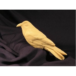 Raven, Common  (1/3 life size), Jerry Simchuk study cast