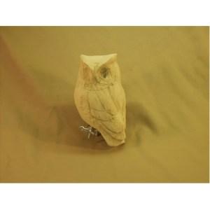 Screech owl - Tupelo Roughout