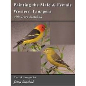 Painting the Male & Female Western Tanagers
