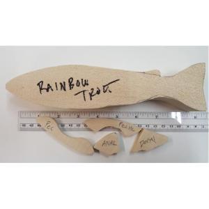 Rainbow Trout Fish- Josh Guge cutout tupelo