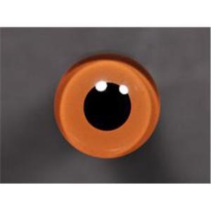 Tohickon Glass Eyes Off-Wire #112 - 10mm Hazel M/P
