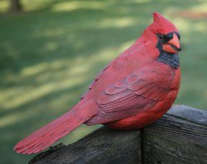 STUDY CASTS Bird Carving