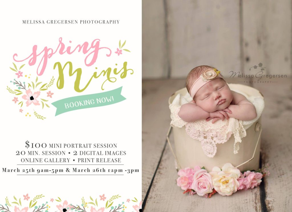 2017 Children Spring Mini Photography Sessions Announced! {Kalamazoo Michigan Children Photographer}