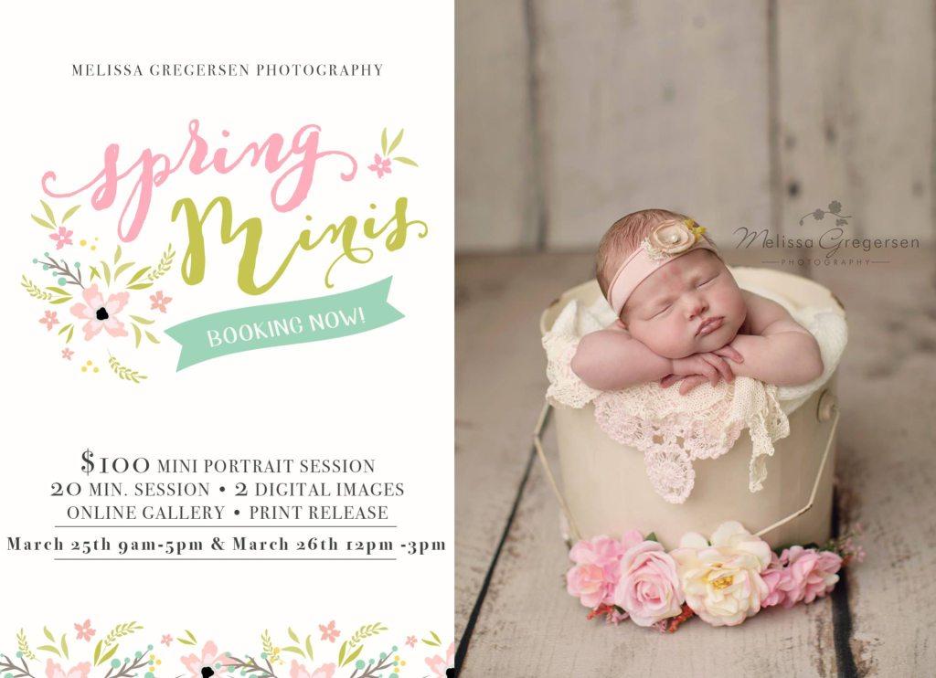 2017 Children Spring Mini Photography Sessions Announced! {Kalamazoo Michigan Children Photographer}