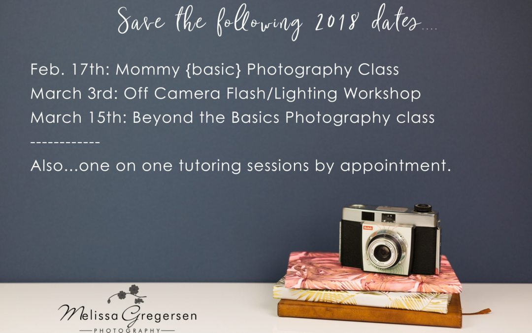 Photography Classes, tutoring, mentoring and Workshop is available now! {Kalamazoo Michigan Photographer}