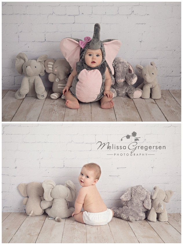 Elephant cuteness!