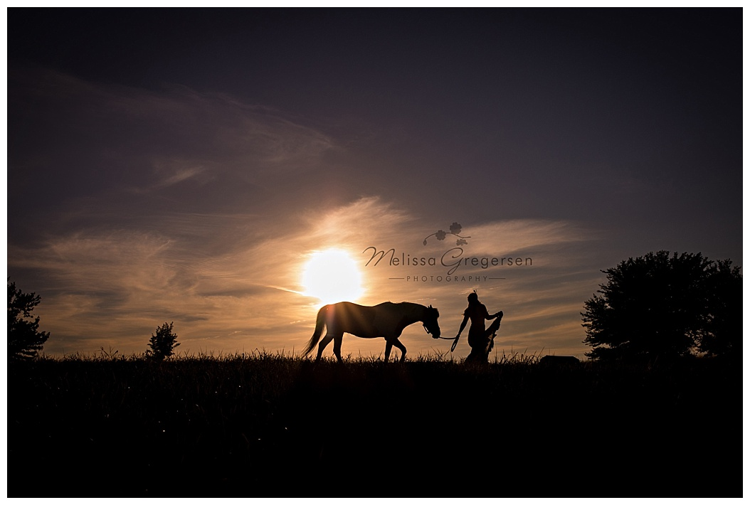 Horse Photography at sunset