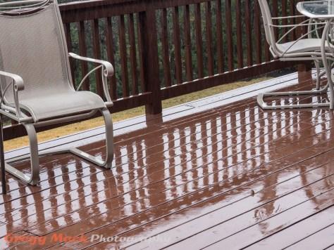 20130109_Rain_in_Austin_004