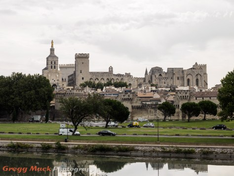 View of Avignon from the Rhone River