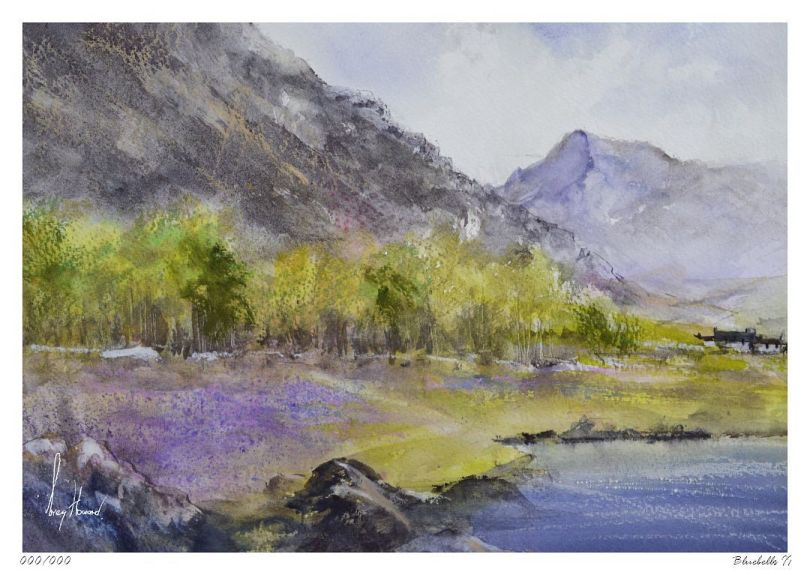 Limited Edition Print Bluebells II