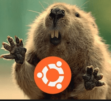 After you install Ubuntu 18.04 Bionic Beaver
