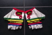 Team LeMond gloves