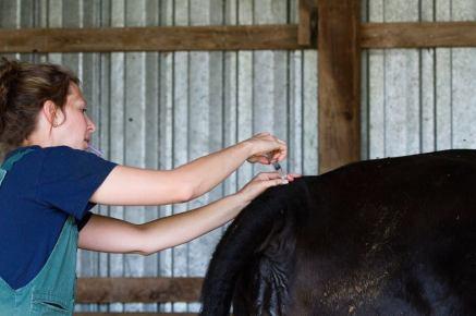 Dr. Miki Mannino-Skaggs administers an epidural.