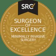 src_seal_minimally-invasive-surgery-surgeon-of-excellence