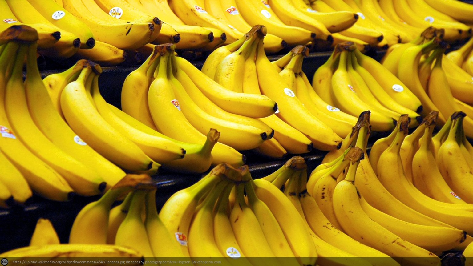 Tune into the Cloud: Yes, we have no Banana's
