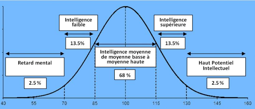 echelle des qi intelligence courde de gaus wehcster- Courbe de Gauss de la répartition de l'intelligence – échelle de Weschler
