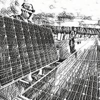 Fessenheim : il faudrait 8300 hectares de parcs photovoltaïques pour la remplacer