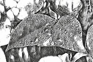 conservatisme-vert-écologie-environnement-semantique-lexique-vocabulaire-nature-progressisme-coronavirus-nouvea-monde-apres