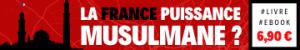 bandeau-la-france-puissance-musulmane-maurice-landrieux-gregory-roose-livre-1913-vieux-critique-islam