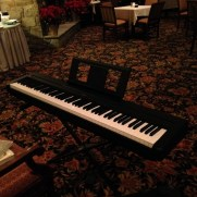 Greg performed a set of solo piano music on New Year's Eve 2015 at the Eagle's Nest Country Club.